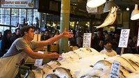 mj-390_294_ask-a-chef-picking-out-the-perfect-fish