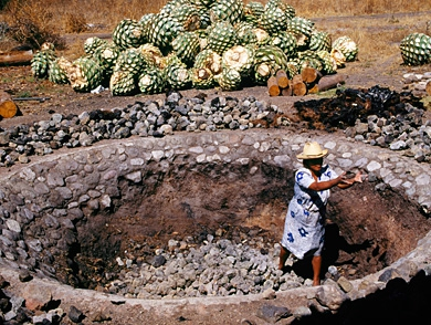 mj-390_294_deep-in-the-heart-of-mezcal-country