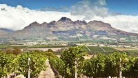 mj-390_294_exploring-south-africas-wine-valley