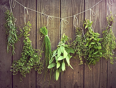 mj-390_294_herbs-for-your-garden-and-your-grill