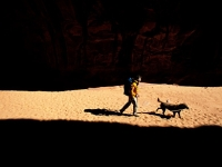 mj-390_294_hiking-with-dogs