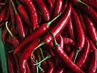 mj-390_294_hot-chili-peppers-could-make-you-feel-more-full