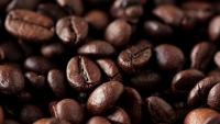 How to Buy the Best Coffee Beans