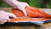 mj-390_294_how-to-fillet-a-fish