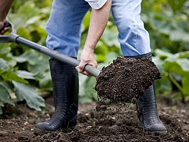 mj-390_294_how-to-get-your-gardens-soil-in-order
