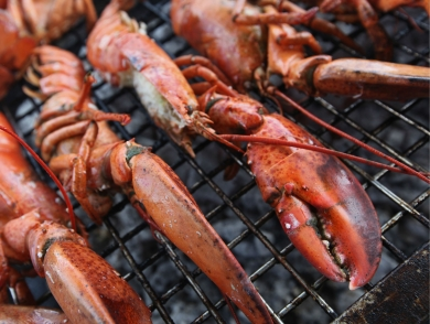 mj-390_294_how-to-grill-a-lobster