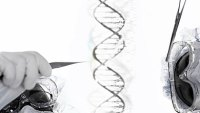 mj-390_294_how-to-shop-for-a-genetic-test