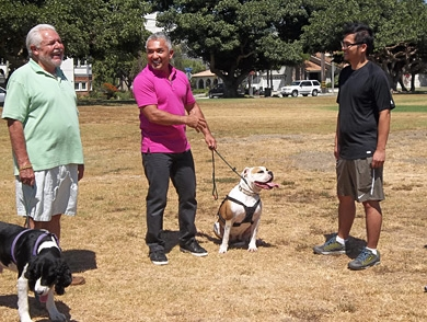 mj-390_294_q-a-with-cesar-millan