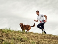 mj-390_294_running-with-your-dog