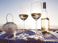 mj-390_294_the-best-cheap-summer-wines