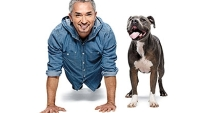 mj-390_294_the-last-word-cesar-millan