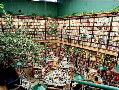 mj-390_294_the-seven-best-bookstore-bars-to-get-drunk-in-around-the-world
