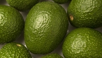 mj-390_294_the-truth-about-the-avocado-shortage