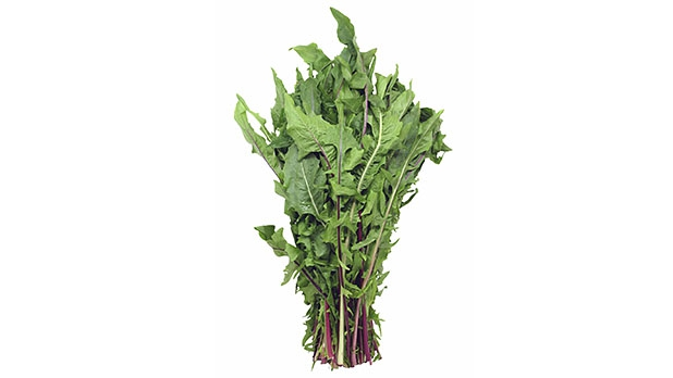 mj-618_348_6-foods-to-boost-your-bicycling-leafy-greens