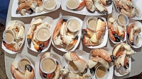 mj-618_348_7th-annual-key-largo-stone-crab-and-seafood-festival-your-winter-warmer-travel-guide