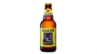 mj-618_348_allagash-white-the-100-best-beers-in-the-world
