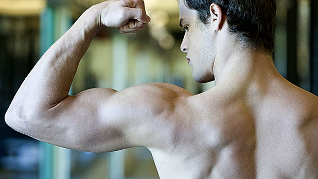 mj-618_348_big-arms-now-the-bigger-biceps-guide