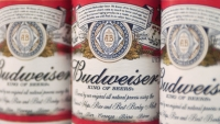 Facing slumping sales, classic American beers are mining their past for authenticity.