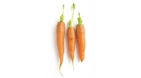 mj-618_348_carrots-foods-for-healthy-skin