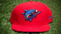 mj-618_348_clearwater-threshers-the-best-minor-league-hats
