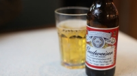 mj-618_348_craft-beer-overtakes-budweiser-this-year-in-alcohol-2014