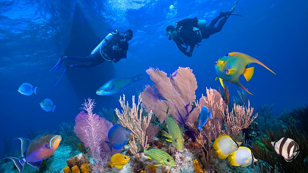 mj-618_348_dive-the-galapagos-10-real-adventures-for-mere-mortals