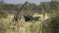 mj-618_348_experience-the-great-african-river-safari-experiences-gift-guide