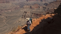 Grand Canyon National Park is just 80 miles north of Flagstaff.