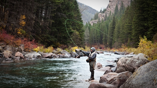 Montana fly fishing best online shopping store for Fly fishing stores near me