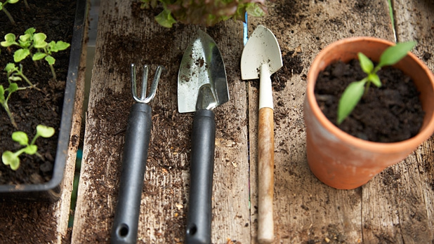 mj-618_348_getting-started-in-the-garden-when-to-plant