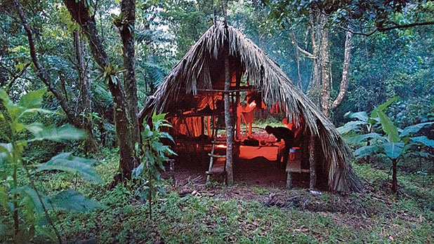 Camping at Four Feet, deep in the jungle.