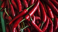 mj-618_348_hot-chili-peppers-could-make-you-feel-more-full