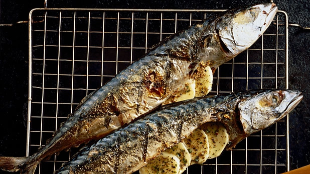 mj-618_348_how-to-buy-and-cook-fish-right-better-fish-tips-and-tricks