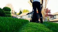 mj-618_348_how-to-get-a-more-sustainable-greener-lawn