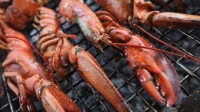 mj-618_348_how-to-grill-a-lobster