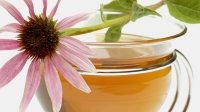 mj-618_348_how-to-shorten-the-common-cold-echinacea