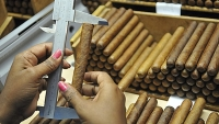 mj-618_348_how-to-spend-100-on-cuban-cigars