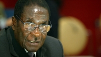 mj-618_348_if-you-think-robert-mugabe-hates-only-white-people-you-re-wrong