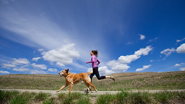 mj-618_348_jogging-running-walking-workouts-you-can-do-with-your-dog