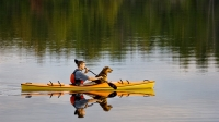 mj-618_348_kayaking-or-stand-up-paddle-boarding-workouts-you-can-do-with-your-dog