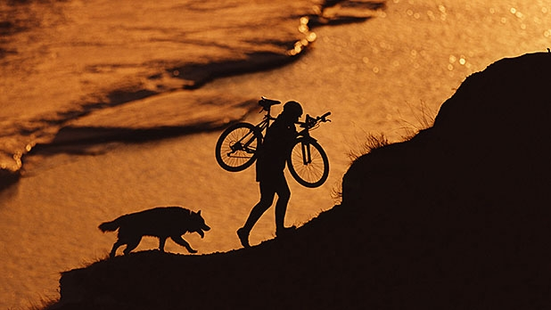 mj-618_348_know-the-breeds-how-to-mountain-bike-with-your-dog