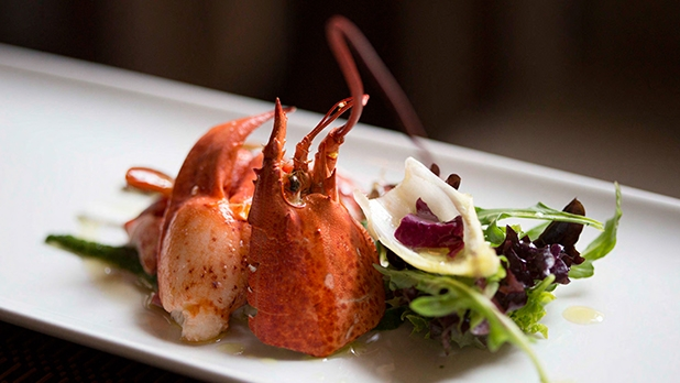 mj-618_348_lobster-caprese-11-seriously-seafood-centric-summer-salads