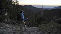 mj-618_348_mount-charleston-nv-ten-best-day-hikes-in-and-near-major-u-s-cities