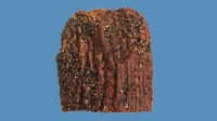 mj-618_348_northern-waters-smokehaus-bison-pastrami-meat-lover-gift-guide