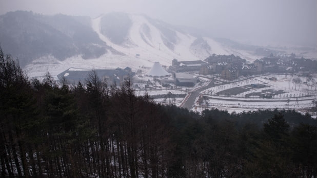 Previously protected forests in Pyeongchang, South Korea are being cleared to create ski runs.