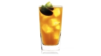 mj-618_348_rum-and-ginger-beer-recipe-best-new-england-rums