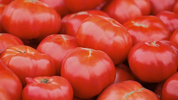 mj-618_348_sauced-36-ways-to-eat-a-tomato