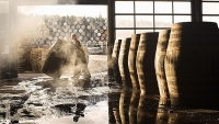 mj-618_348_the-end-of-aged-whisky