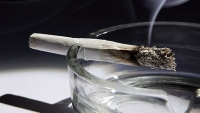 mj-618_348_the-nfl-pot-policy-by-the-numbers
