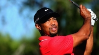 mj-618_348_tiger-woods-most-successful-athlete-businessmen